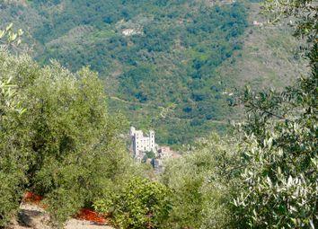 Thumbnail Land for sale in Strada Vicinale Alberì, Dolceacqua, Imperia, Liguria, Italy