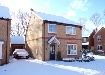 Thumbnail 4 bed detached house for sale in Bluebell Walk, Colburn, Catterick Garrison