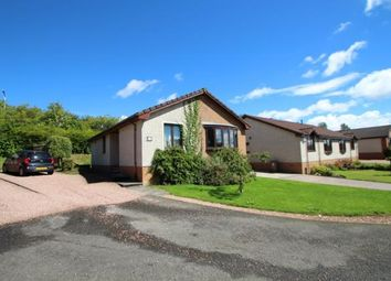 Thumbnail 3 bed bungalow for sale in Balgeddie Gardens, Glenrothes, Fife
