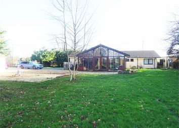 Thumbnail 4 bed detached bungalow for sale in Magdalen Lane, Wingfield, Trowbridge, Wiltshire
