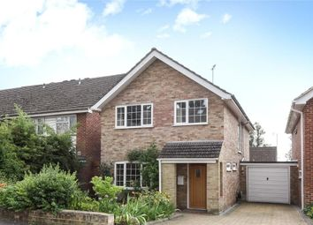 Thumbnail 4 bedroom detached house to rent in Ancastle Green, Henley-On-Thames