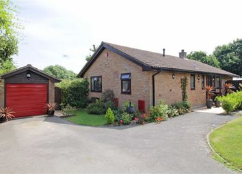 Thumbnail 3 bedroom bungalow for sale in Ashdown Walk, New Milton