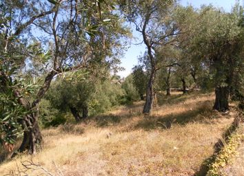 Thumbnail Land for sale in Gastouri, Benitses, Corfu, Ionian Islands, Greece