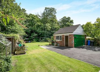 Thumbnail 4 bed bungalow for sale in White Lane, Chapeltown, Sheffield