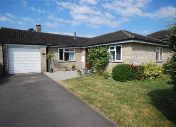 Thumbnail 3 bed detached bungalow for sale in Pound Close, Ledbury, Herefordshire