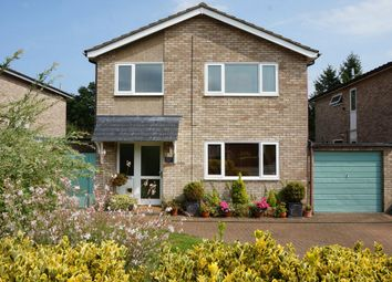 Thumbnail 4 bedroom detached house for sale in Thorney Road, Capel St Mary, Ipswich, Suffolk