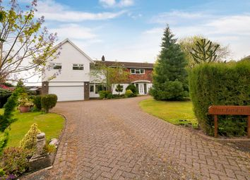 Thumbnail 4 bed detached house for sale in Selling Court, Selling, Faversham