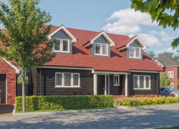 Thumbnail 4 bed detached bungalow for sale in Clay Lane, Fishbourne, Chichester