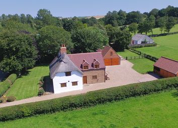 Thumbnail 4 bed cottage for sale in The Shepherd's Cottage, Brinkhill