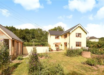Thumbnail Detached house for sale in Cuckolds Pit, Chardstock, Axminster, Devon