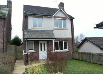 Thumbnail 4 bed detached house to rent in Beck Avenue, Dumfries