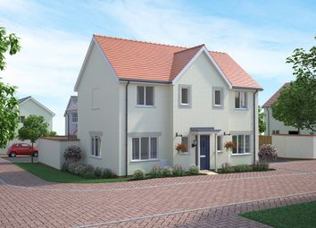 Thumbnail 4 bedroom detached house for sale in Tews Lane, Barnstaple, Devon