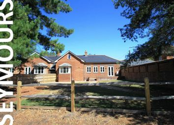 Thumbnail 3 bed property to rent in Mill Lane, Forest Green, Dorking