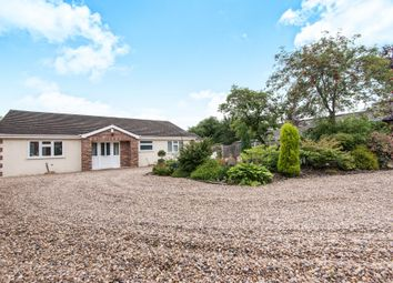 Thumbnail 4 bedroom detached bungalow for sale in High Street, Marton, Gainsborough