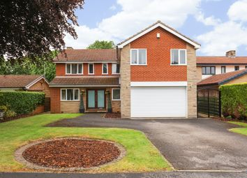 Thumbnail 4 bed detached house for sale in Thornsett Gardens, Dore, Sheffield