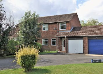 Thumbnail 3 bed semi-detached house for sale in Williams Close, Holbury, Southampton