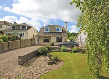 Thumbnail 3 bedroom detached house for sale in Upton Manor Road, St Marys, Brixham