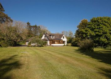 Thumbnail 4 bed detached bungalow for sale in Dunmore Road, Ballynahinch, Down