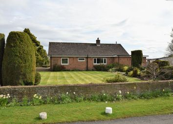 Thumbnail 2 bed detached bungalow to rent in Linstock, Carlisle
