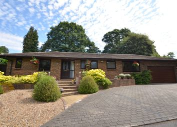 Thumbnail 4 bed bungalow for sale in Silver Close, Kingswood