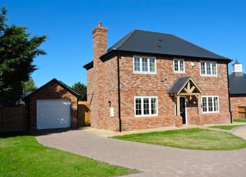 Thumbnail 4 bed detached house to rent in Dew Drop Close, Felsted