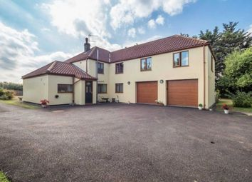 Thumbnail 4 bed detached house for sale in Acle Bridge, Acle, Norwich