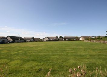 Thumbnail Land for sale in Development Plot, Auldbar Road, Letham, Forfar