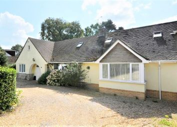 Thumbnail 4 bed detached bungalow for sale in Oaks Drive, St. Leonards, Ringwood