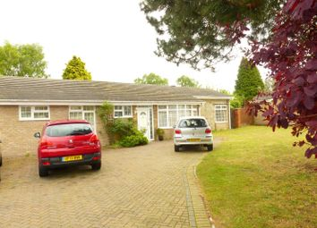 Thumbnail 4 bedroom bungalow to rent in Ellesfield Road, West Parley, Ferndown