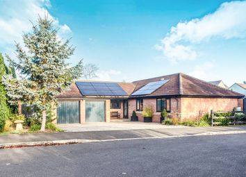 Thumbnail 3 bed detached bungalow for sale in Wilton Orchard, Street