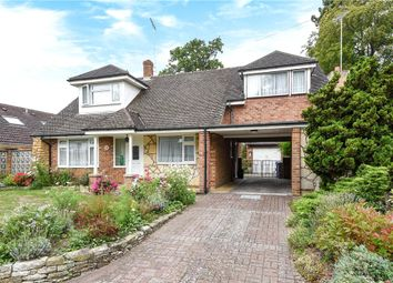 Thumbnail 3 bed bungalow for sale in Highclere, Sunninghill, Berkshire