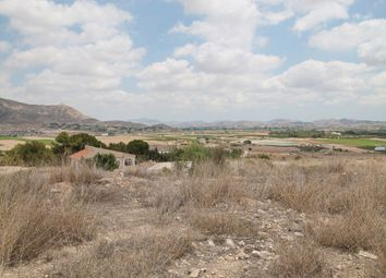Thumbnail Land for sale in 03680, Aspe, Spain