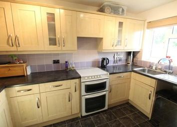 Thumbnail 2 bed semi-detached house to rent in Plover Rise, Ivybridge