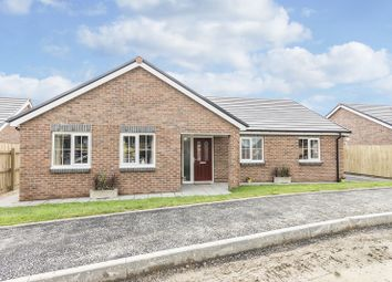 Thumbnail 3 bed detached bungalow for sale in Plot 2 Maes Y Llewod, Bancyfelin, Carmarthen, Carmarthenshire.