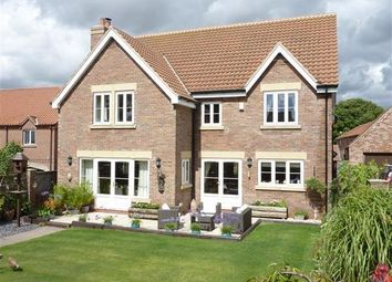 Thumbnail 5 bedroom detached house to rent in South Street, North Kelsey, Market Rasen