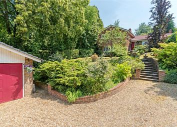 Thumbnail 4 bed detached house for sale in Kings Hill, Beech, Alton, Hampshire