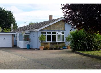 Thumbnail 3 bed detached bungalow for sale in Church Lane, Stow Maries, Chelmsford
