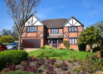 Thumbnail 5 bed detached house for sale in Wayside Walk, Heathfield, East Sussex