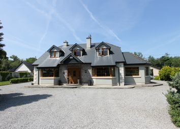 Thumbnail 4 bed detached house for sale in Annaghbeg, Dromineer, Tipperary