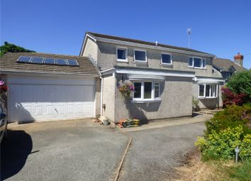 Thumbnail 5 bed detached house for sale in Wades Close, Holyland Road, Pembroke