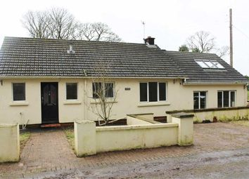 Thumbnail 2 bed detached bungalow for sale in Sardis, Saundersfoot