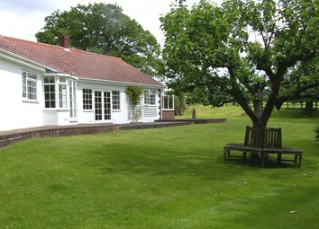 Thumbnail 4 bed bungalow to rent in Sparrow Row, Valley End, Chobham, Surrey