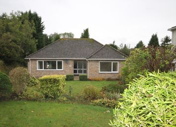 Thumbnail 3 bed bungalow to rent in Cowper Road, River