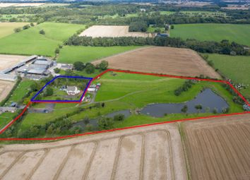 Land for sale in Longhorsley, Morpeth, Northumberland NE65