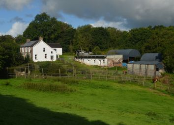 Thumbnail 5 bed detached house for sale in Milo, Llandybie, Ammanford