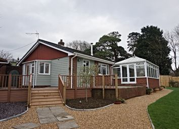 Thumbnail 3 bedroom detached bungalow for sale in Blackwater Road, Newport
