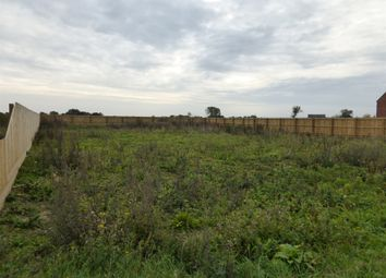 Thumbnail Land for sale in Mill Road, Murrow, Wisbech
