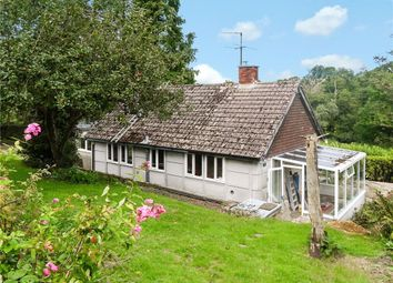 Thumbnail 2 bed bungalow to rent in Hawkchurch, Axminster, Devon