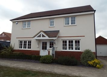 Thumbnail 4 bedroom detached house to rent in Ashfield Drive, Letchworth Garden City
