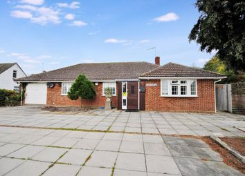 Thumbnail 4 bedroom bungalow to rent in High Street, Clavering, Clavering